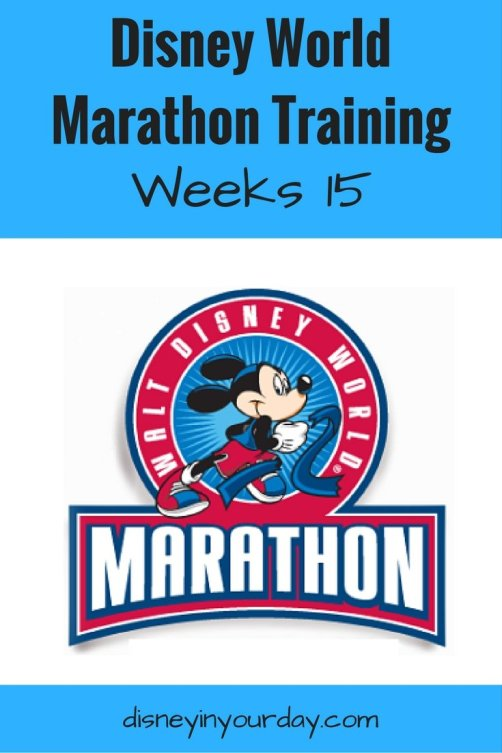 disney-world-marathon-training