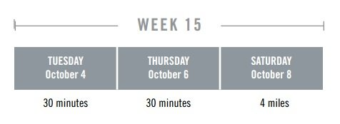 week15