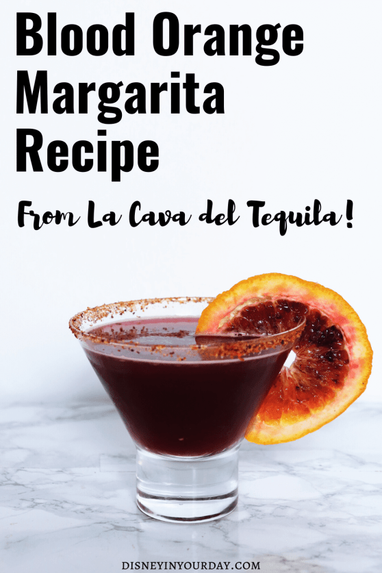 blood orange margarita recipe - Disney in your Day