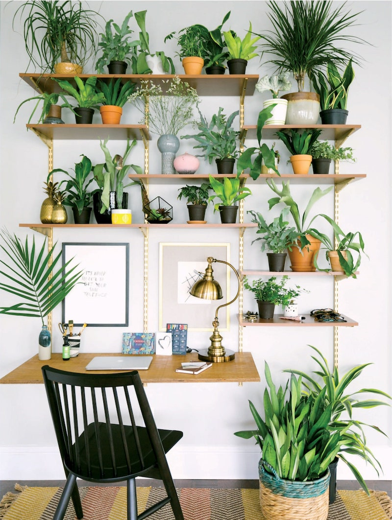 Architectural Digest - keep plenty of plants in your home office