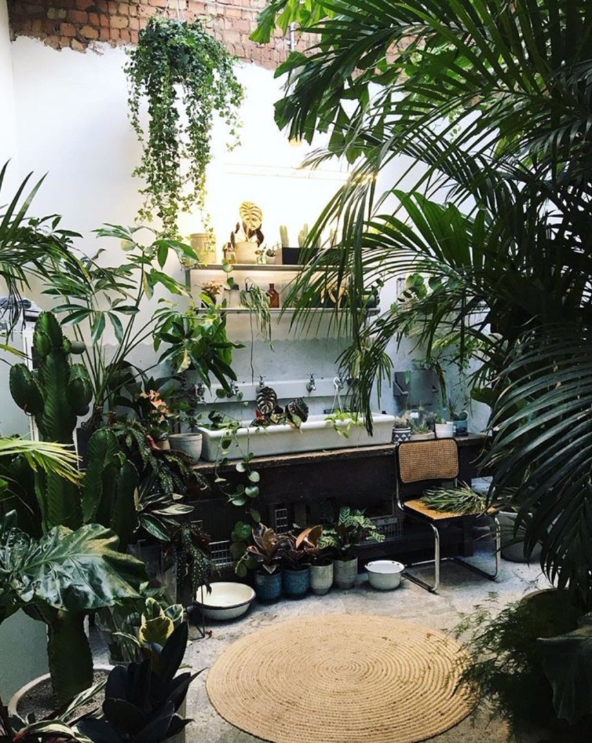 Conservatory Archives plant emporium in East London