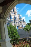Magic Kingdom - Cinderella Caste