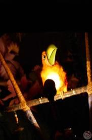 Magic Kingdom - Enchanted Tiki Room