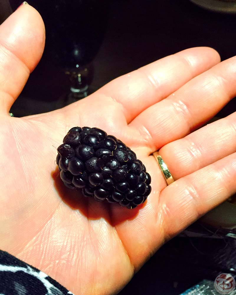 Huge Blackberry!