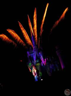 Mickey's Not-So-Scary Halloween Party 2015 (82)