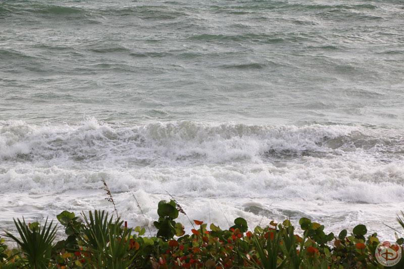 View from Room 2224 at Disney's Vero Beach Resort