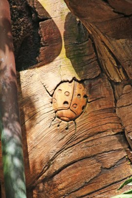 Tree of Life at Animal Kingdom - Ladybug Carving