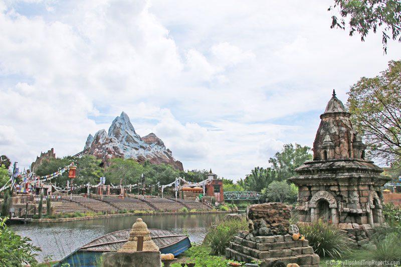 Animal Kingdom - Everest