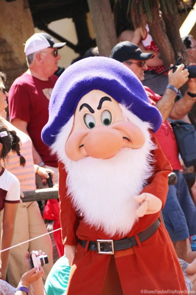 Grumpy - Festival of Fantasy Parade - Magic Kingdom