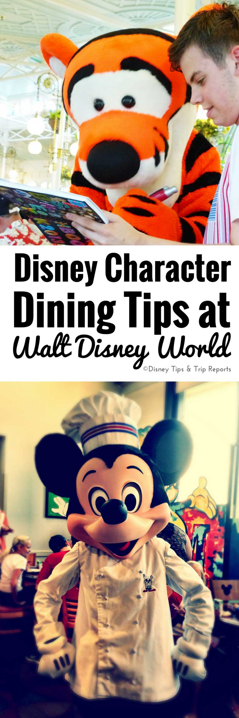 Disney Character Dining Tips! Don't visit Walt Disney World without these top tips!