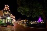 Cinderella Castle Uncommon View