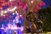 Pinocchio - Disneyland Hub