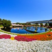 Epcot Flower & Garden Festival 2012 Monorail