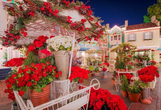 main-street-flower-market-disneyland-soft-focus