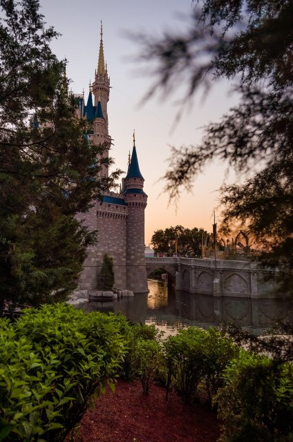 cinderella-castle-through-trees-morning