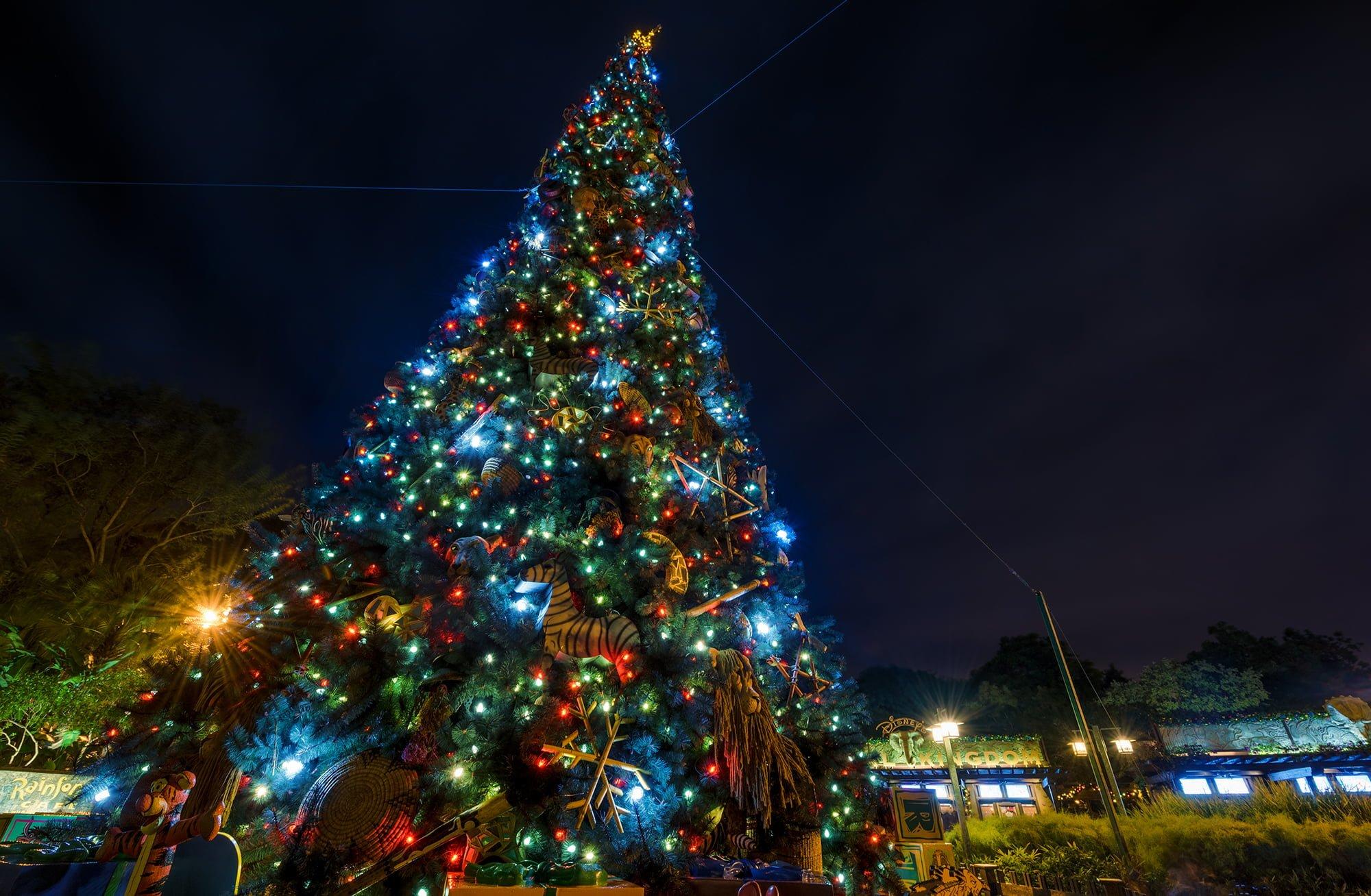 Animal Kingdom Christmas Shirt.Ultimate 2019 Disney World Christmas Guide Disney Tourist Blog