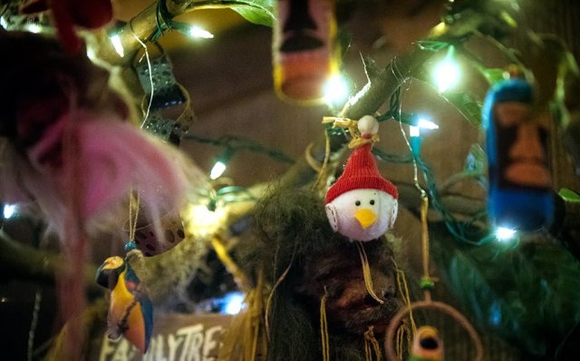 trader sams christmas family tree - Sams Christmas Decorations