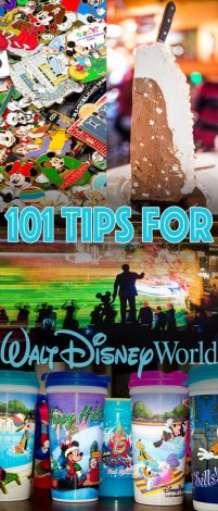 101-great-disney-world-tips
