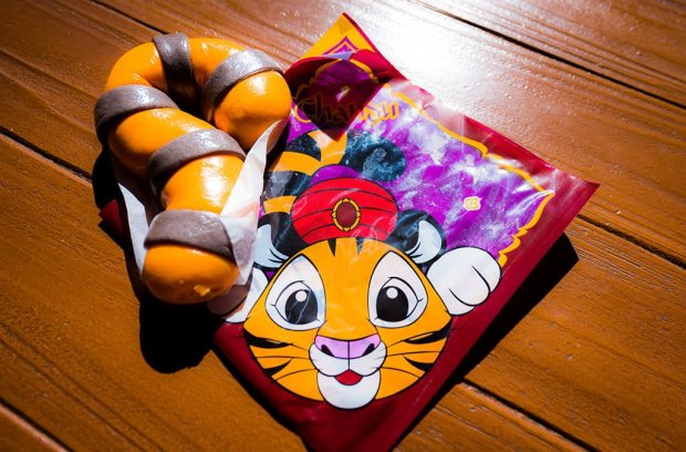 Image result for chandu tail disney tourist