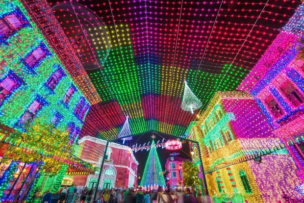 osborne-lights-canopy-wide copy