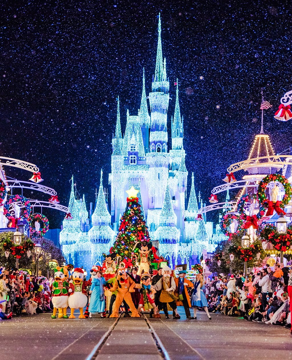 Best And Worst Months To Visit Disney World