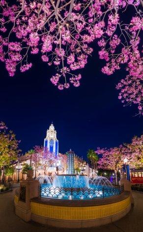 carthay-circle-spring-blooms-night-normal-crop copy