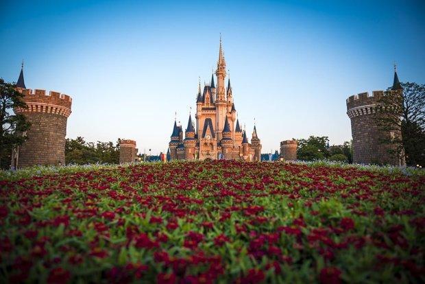 cinderella-castle-tokyo-red-flowers