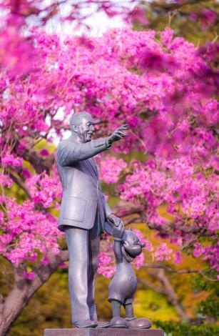 disneyland-update-spring-2016-025