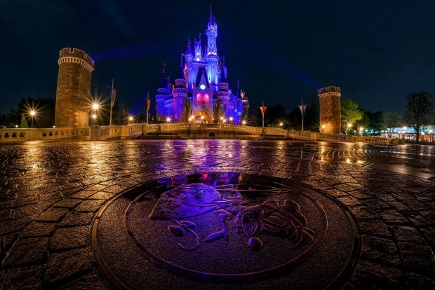 cinderella-castle-mouse-pavement-tokyo-disneyland