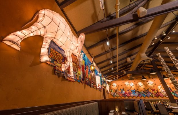 tiffins-restaurant-animal-kingdom-walt-disney-world-034