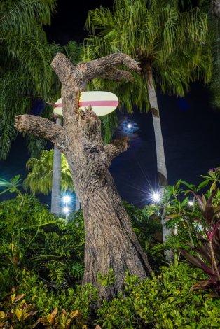 typhoon-lagoon-beach-bash-disney-vacation-club-wdw-004