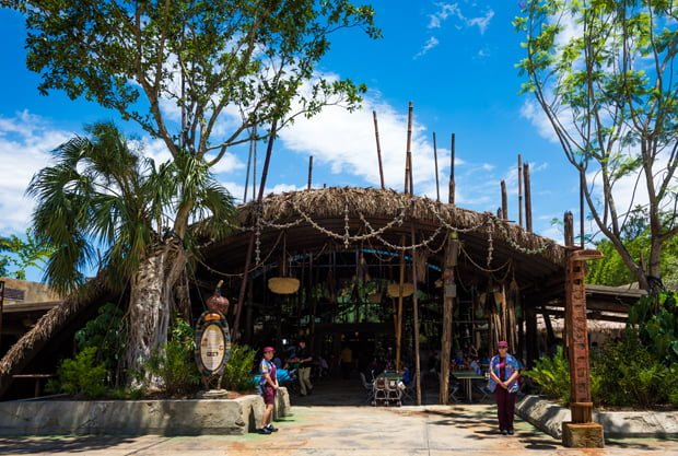 Animal Kingdom Counter Service Rankings Disney Tourist Blog