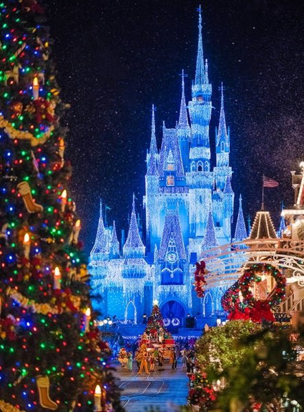 Will Disney Cancel Mickey's Very Merry Christmas Party?   Disney