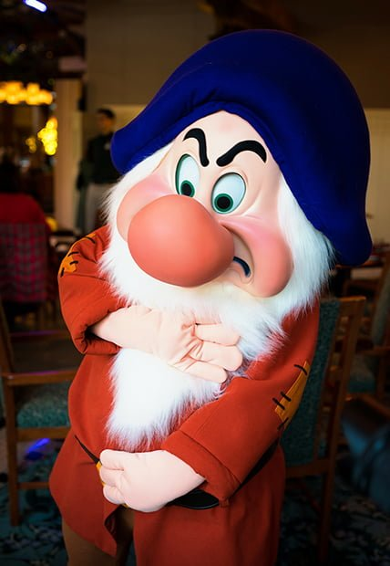 Artist Point Storybook Character Dining Review - Disney