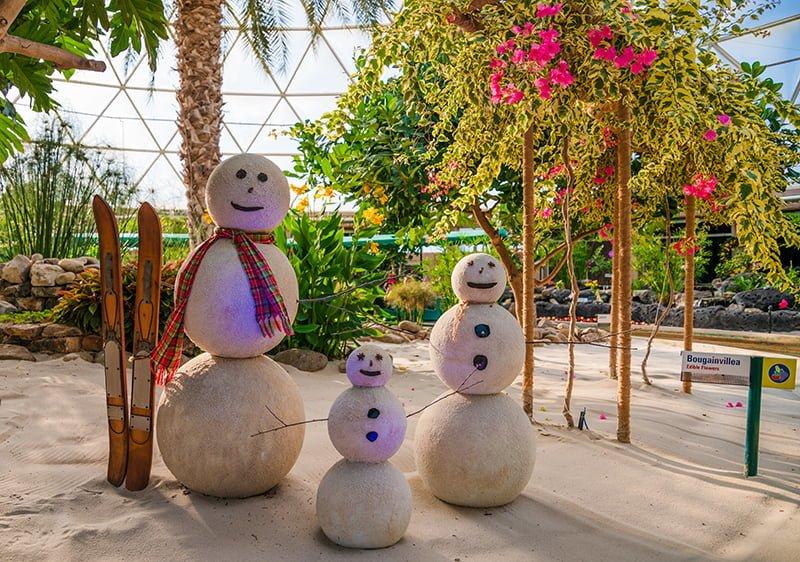 New Disney World Park Hours Into 2021 - Disney Tourist Blog