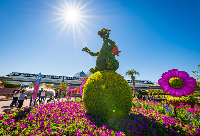 2019 epcot flower garden festival first impressions - Epcot flower and garden concerts ...