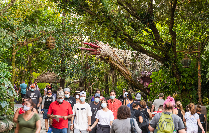 Animal Kingdom Report: Awesome Afternoon