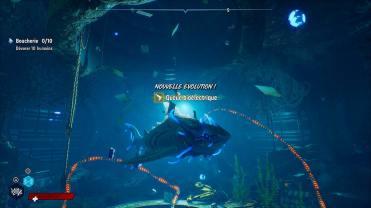 Maneater Requin Evolution queue bioelectrique