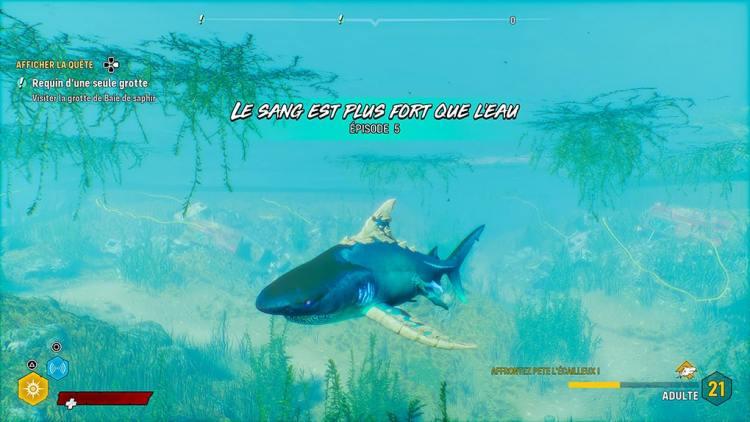 Maneater Requin le sang plus fort que l'eau