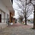El hecho ocurrió anoche alrededor de las 20:30 horas en la calle Alberti entre Belgrano y Necochea, en cercanías del domicilio de la víctima. Liliana Estela Pelosi, de 56 años, […]