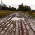 Como ocurrió en toda la zona, la localidad perteneciente al partido de Genera Pinto donde se encuentra el gran espejo de agua, tuvo lluvias intensas durante a madrugadaque complicaron considerablemente […]