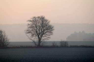 Vinter natur frederiksberg pid