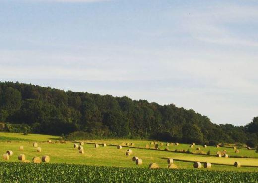 Ardennen roadtrips in Europa
