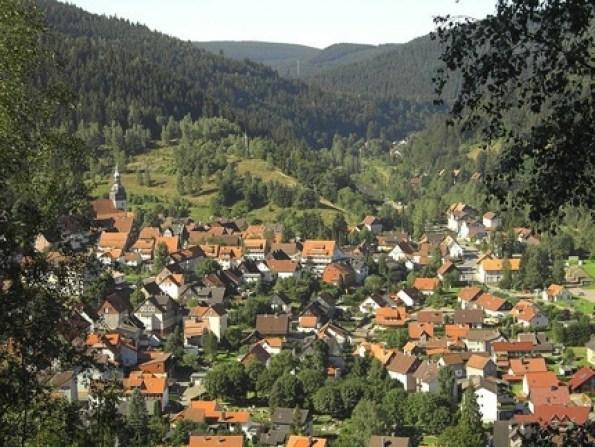 Prachtige natuur van de Harz (Foto: Harzgids.nl)