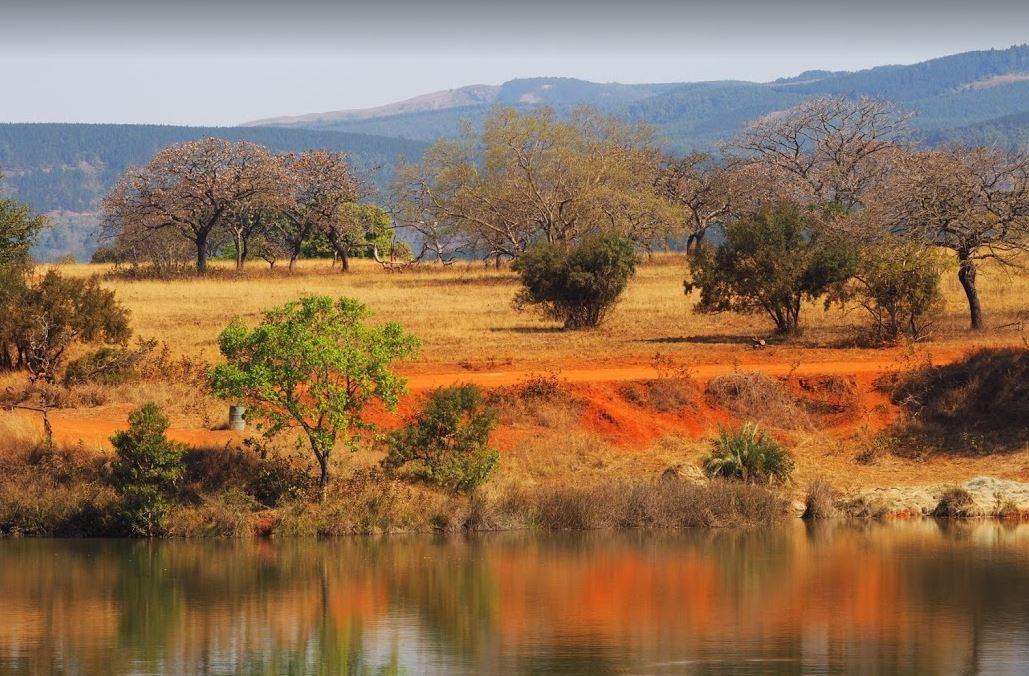 Mlilwane Swaziland natuurpark