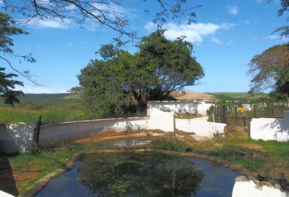 Crocodile Creek Afrika