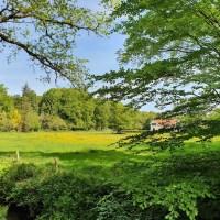 Fietsroute: 45 km door de Veluwse bossen rondom Apeldoorn