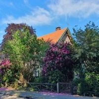 Een tuinontwerp maken: Genieten van het buitenleven