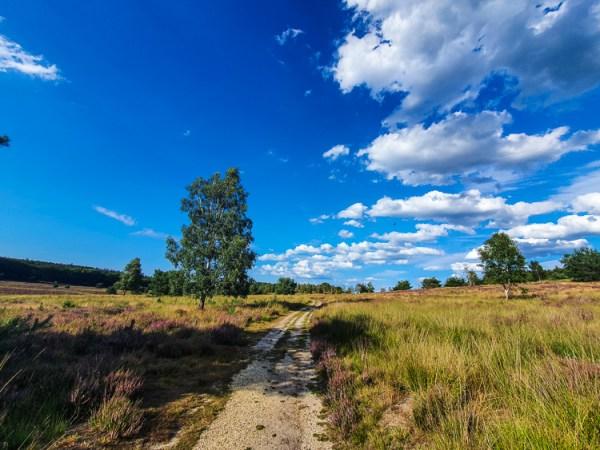 Heide wandelroute