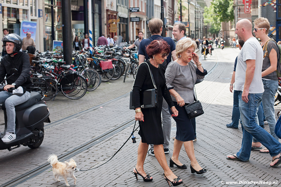 Streetphotography Posh older women walking a dog in The Hague